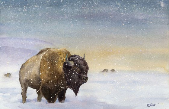 The Sentry - Bison