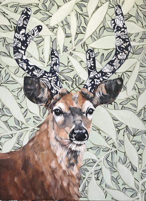 Magnus, the Whitetail Buck