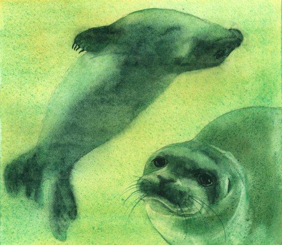 Watercolour Seals - original painting