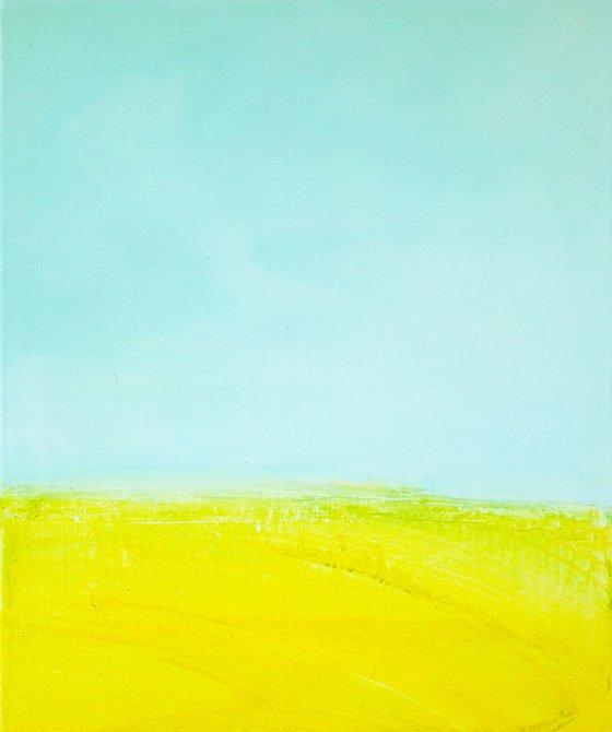 rapeseed field 2
