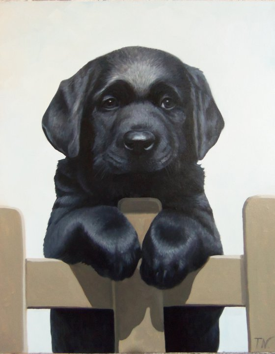 Doggy-4 (40x50cm, oil painting, ready to hang)