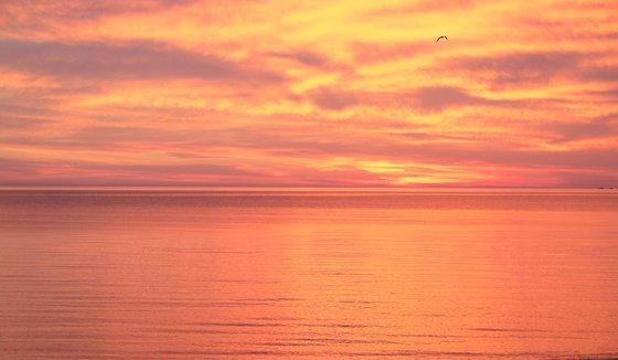 Photography | Pink Orange Sunset in Baltic Sea