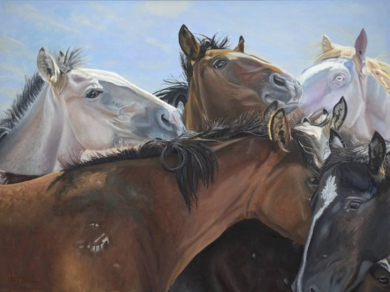 Horse Whispers - Wild American horses, equestrian oil painting