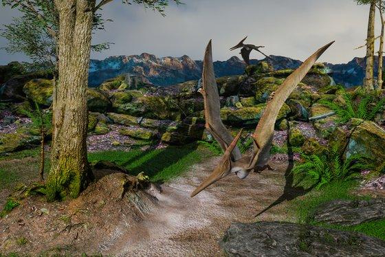 Pteranodons II