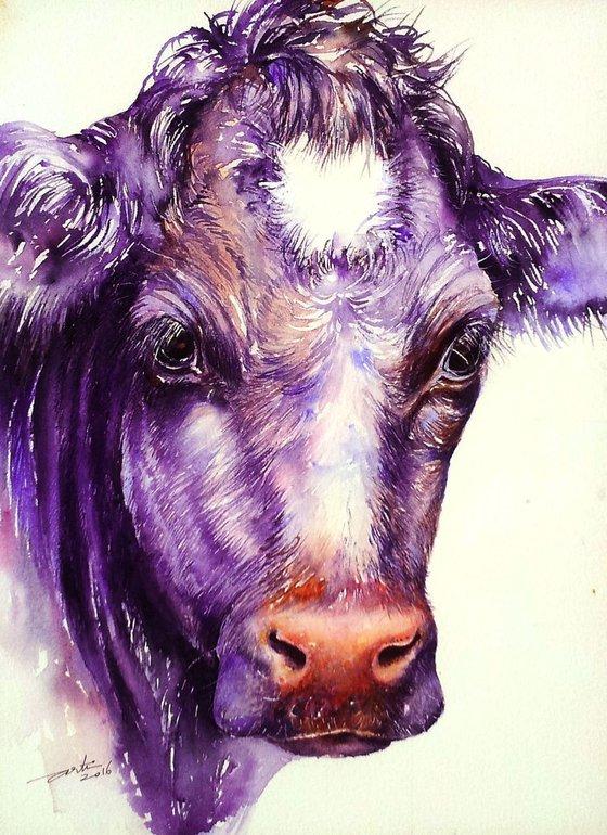 Moon-Moon the Cow