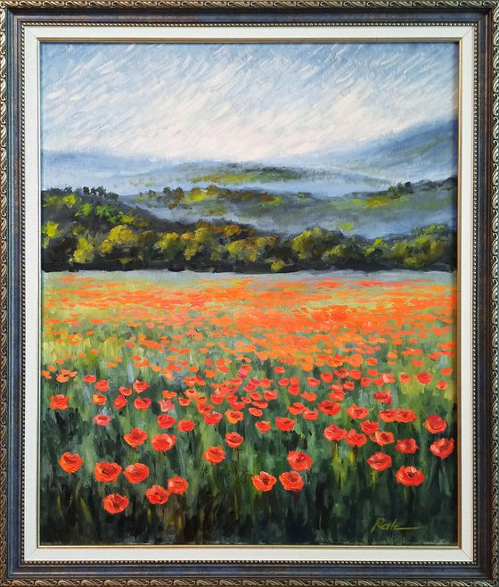 Poppy field in the mountains