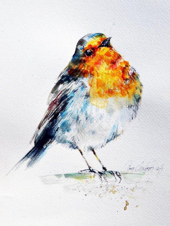 Robin watercolour