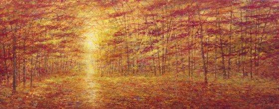 Autumn Beauty II