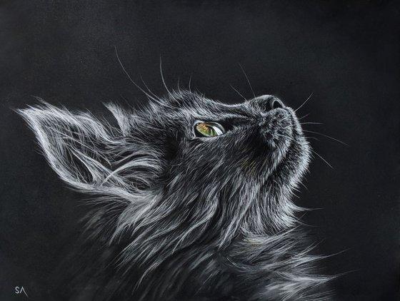 Cats Eyes V  (Original Painting)