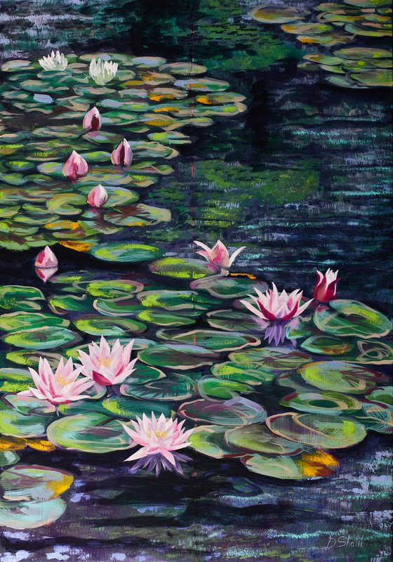 Water Lilies No. 1 / Nymphaea / Lotuses / original oil painting on canvas