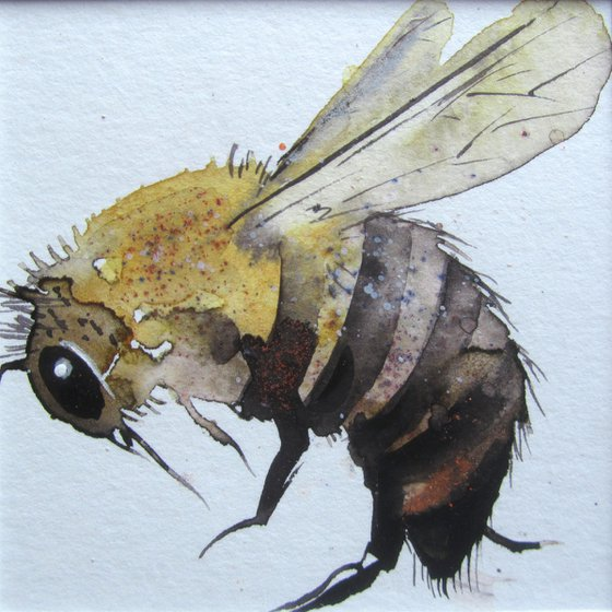 Busy Bee - 1