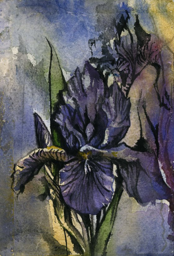 blue iris watercolor on hand-made paper