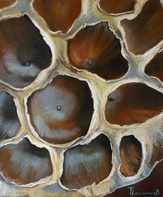 The lotus. Subconscious mind