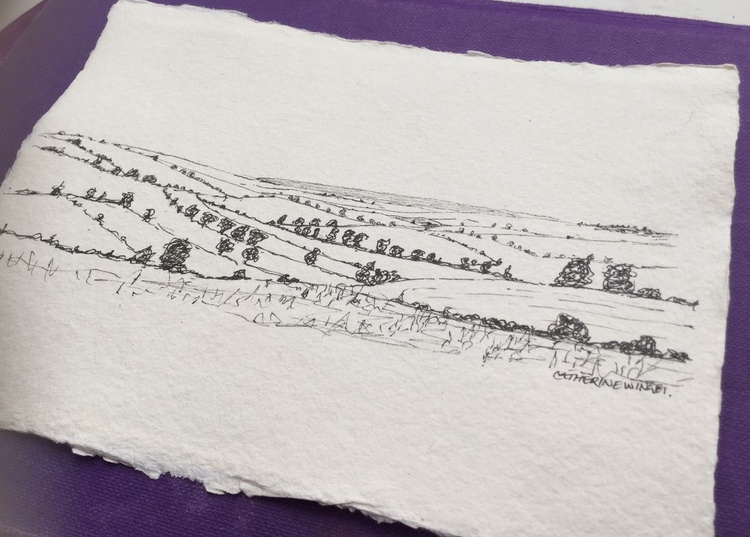 Edge of the Western Woods Baldock Single A5 Blank or Personalised card pencil landscape grass trees fields