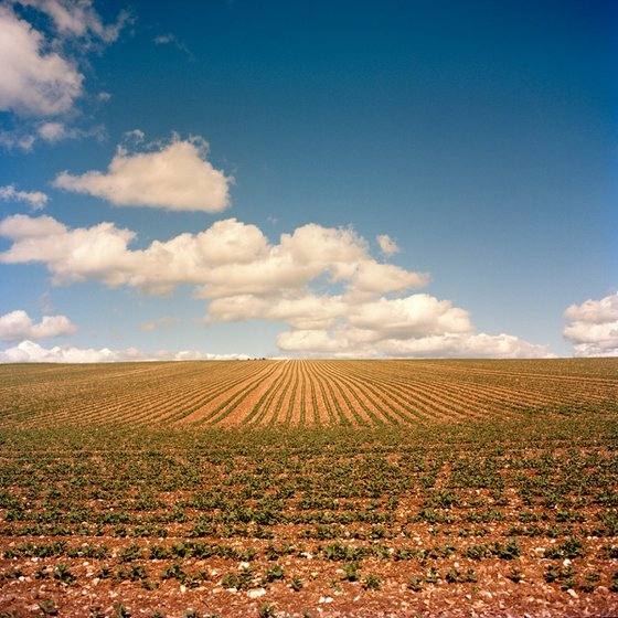 Ploughed (Space of Mind Series)
