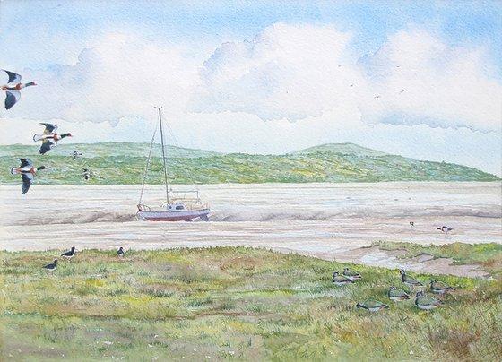 Shorebirds, Dee estuary, Wirral