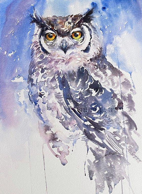 Astrid_ Eagle Owl