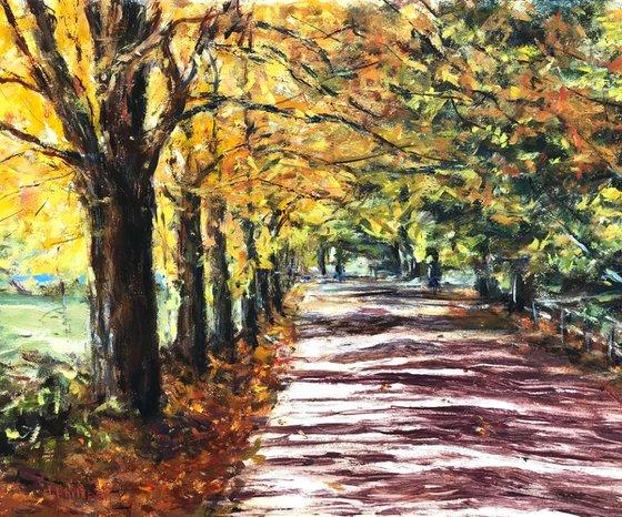 Fall Foliage New Hampshire II