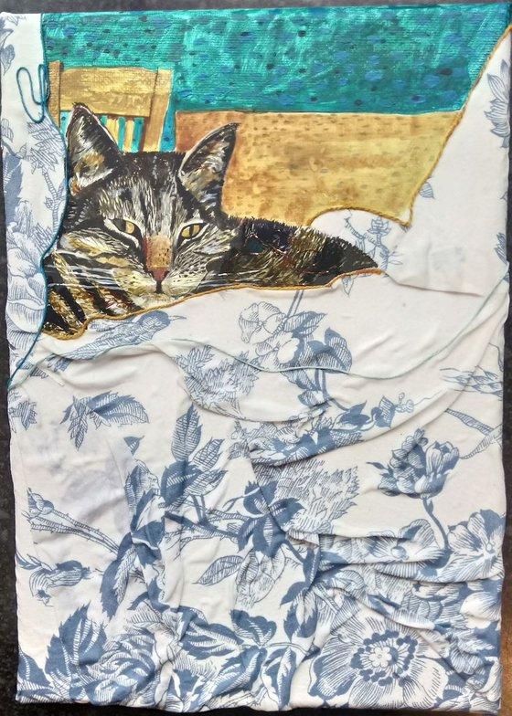 Cat amongst the cushions