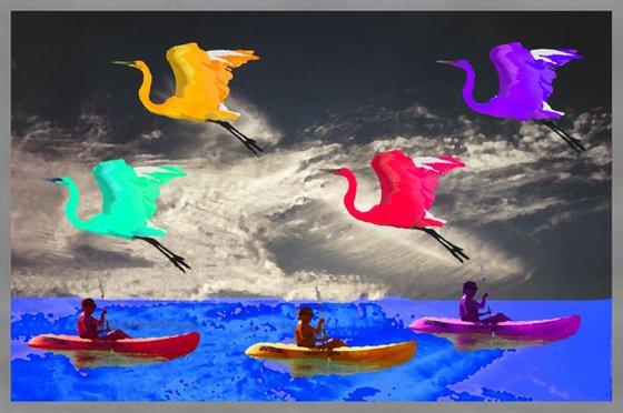 Canoes & Birds