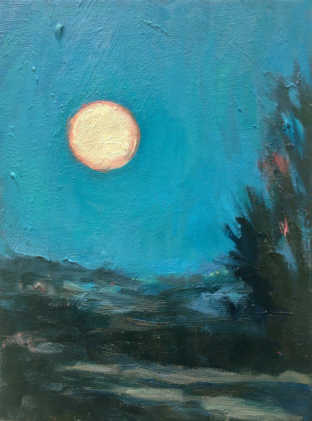 Moonlight over Eastcourt