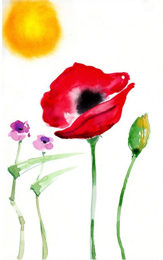 Poppy (singer) - Papaveraceae