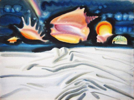 Memoir of the sea. Shells.