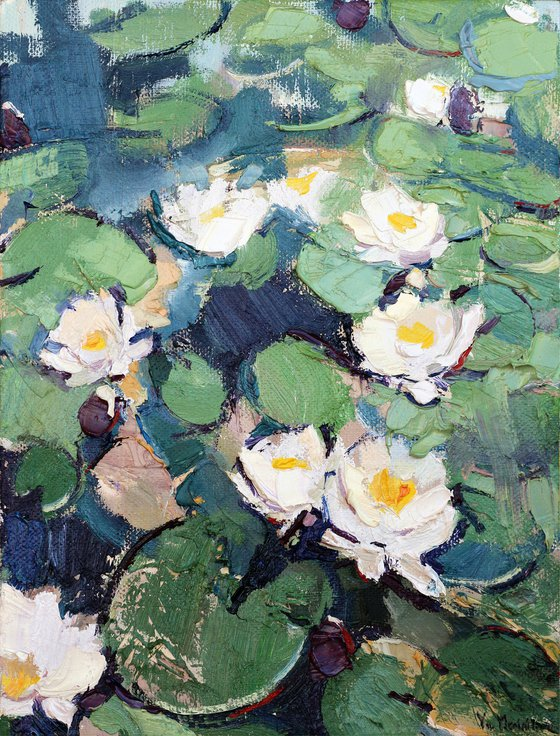 Water lilies. Christmas gift
