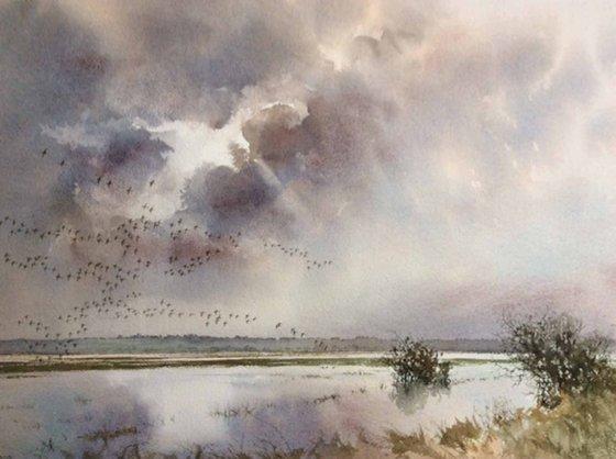 Wildfowl Flight, Otmoor