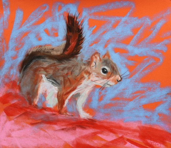Stopped - Red Squirrel Pastel