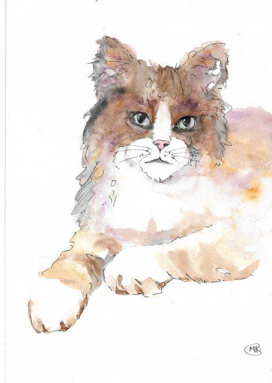 Little Cat, Kitten by Marjan's Art