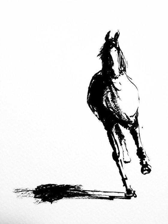 Horse series #1 - Black and white