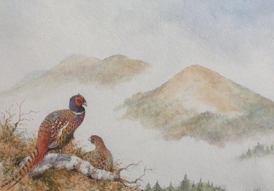 The Malvern Hills. Pheasants and Mist.